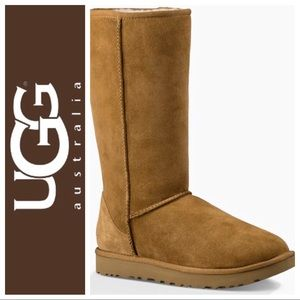 UGG • Women's Size 7 Chestnut Classic Suede Boots